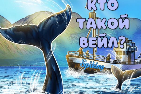 Кто такой вейл кит